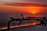 7D RGB-2697-SSunrise Folley Beach
