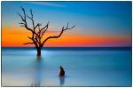 Cape Romain Boneyard Sunrise