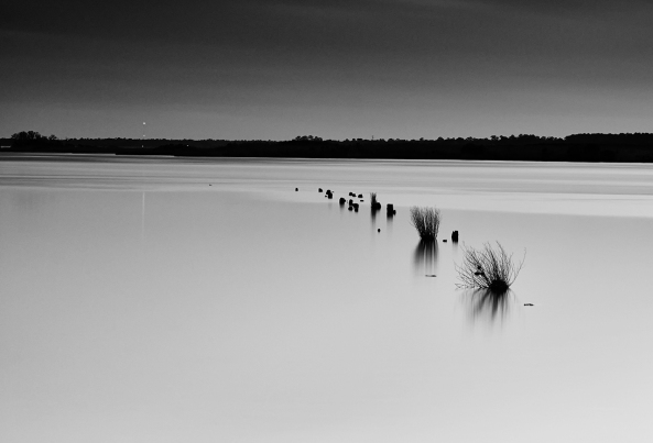 Boat Launch Pilings, Deep Twilight