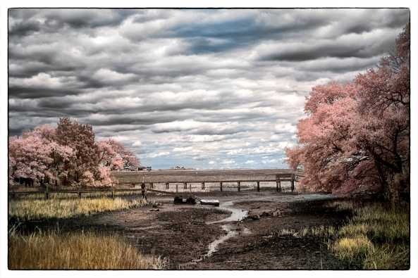 Murrells Inlet Marsh, X Pro 1 720nm IR Faux Color