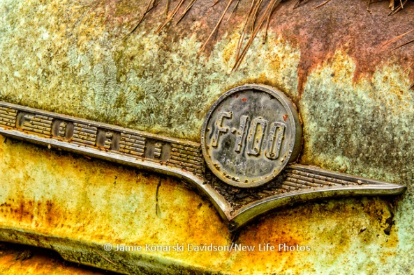 Old Car City, Rust is Gold!, Jamie Davidson
