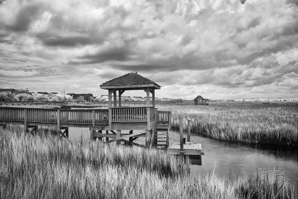 Pawleys Marsh, 830nm X100s