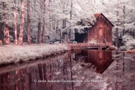 Lefler Mill, Jamie Davidson