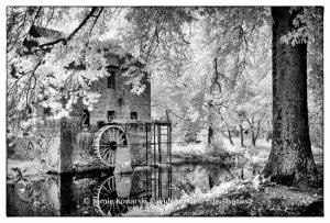 Lindale Mill, Jamie Davidson