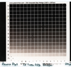 Van Dyke Brown Step Wedge Calibration Chart for 3 Min Exposure
