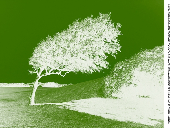 Green Negative for UV blocking.