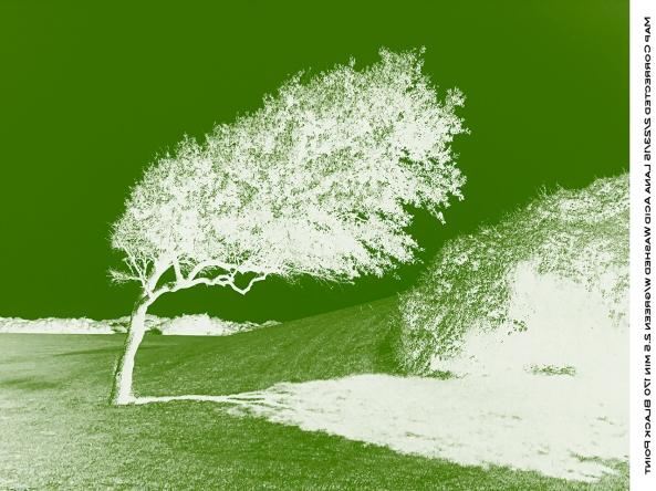 Green Negative for UV blocking.