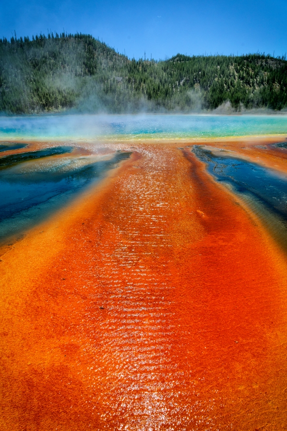Prismatic Spring Yellowstone