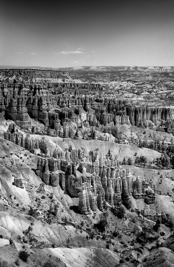 Hoodoos in Bryce National Park at the Sunset Point Overlook. Olympus XA with Kodak Tmax 100 film. This is MY defining image for my entire trip!