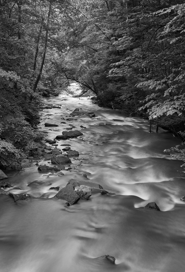 Dunloupe Creek, New River Gorge WV, M Monochrome