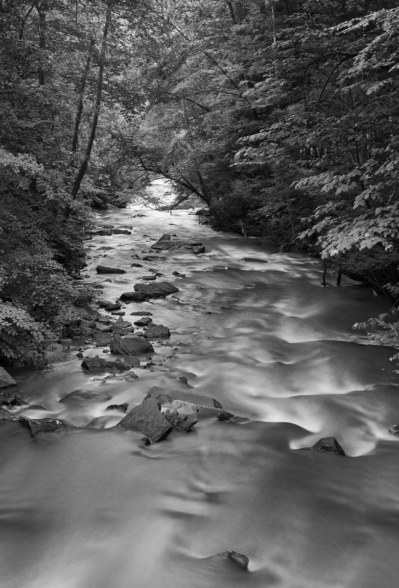 Dunloupe Creek, New River Gorge WV, M Monochrome